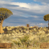 Namibia Jigsaw